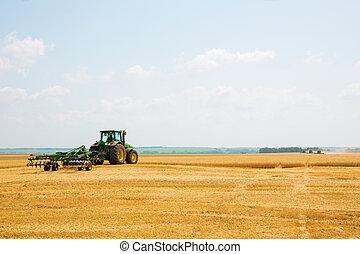 拖拉机, 带, 耕种者, 在中, a, 领域
