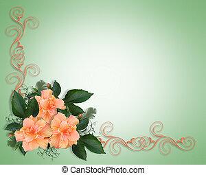 招待, 結婚披露宴, hibiscu, ∥あるいは∥