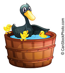 拿, 鴨子, 洗澡