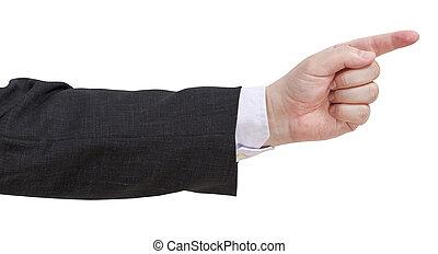 指すこと, -, 指, ジェスチャー, 手