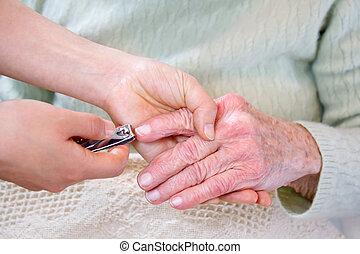 指の爪, 切断