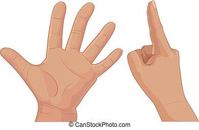 指, セット, 6, バッチ