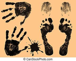 指, プリント, フィート, 手