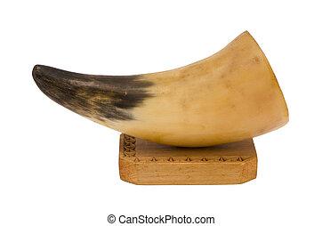 捕食動物, 動物, 牙, きば, 木, 板, 装飾, 白