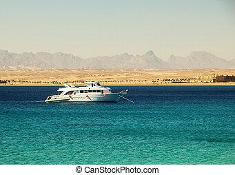 捨てられる, 海, モーターボート, ヨット, に対して, ゴム, 海岸, クラスト, 背景