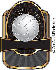 排球, 設計, 樣板, 橢圓形