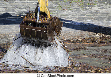 掘削機, 港, 木, 湖, きれいにしなさい, トランク