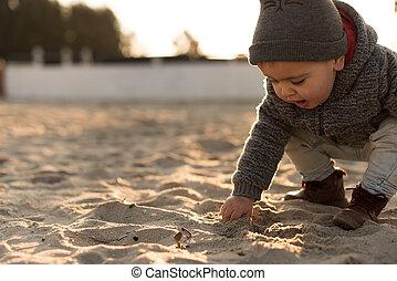 探検, よちよち歩きの子, 自然