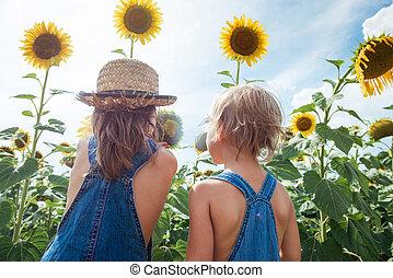 探検, 花, ひまわり, 2, 屋外で, 子供