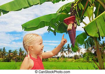 探検, 花, 自然, 子供, -, 成果, 微笑, バナナ