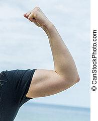 提示, 女, 腕 筋肉