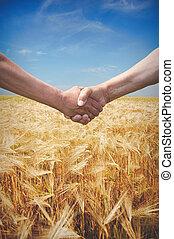 握手, 小麦, 農夫, フィールド, 時間, 収穫