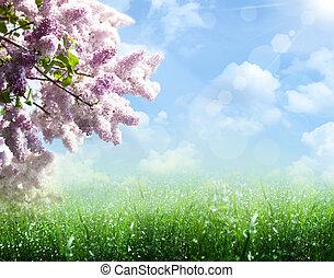 摘要, 夏天, 同时,, 春天, 背景, 带, 紫丁香, 树