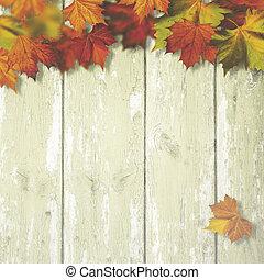 摘要, 秋天, 背景, 由于, 槭樹葉, 在上方, 老, 木 書桌
