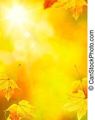 摘要, 秋天, 黃色 葉子, 背景