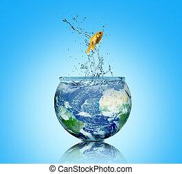 摘要, 背景, 概念, 在中, world., 地球, 同时,, fish