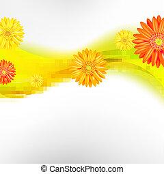 摘要, 背景, 由于, 顏色, gerbers, 花