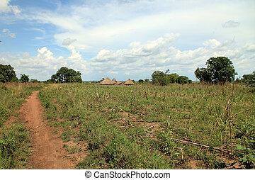 支部, ウガンダ, -, アフリカ, 村