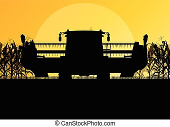 收获者, 玉米, 黄色, 秋季, 领域, 矢量, 结合, 乡村, 摘要, 收获