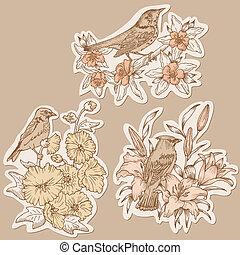 放置, 标记, 葡萄收获期, -, 手, 矢量, 画, 花, 鸟