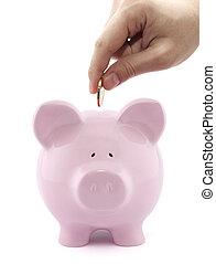 放, 硬幣, 進, the, 豬一般的銀行