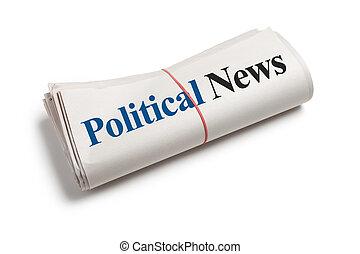 政治, 新聞