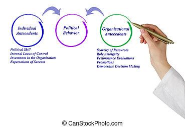 政治, 行為