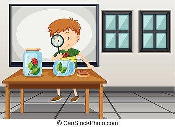 教室, 男の子, 見る, てんとう虫