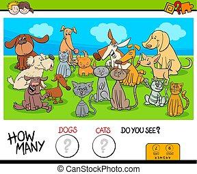 教育, ネコ, 数える, ゲーム, 犬