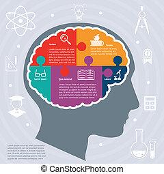 教育, 概念, infographics