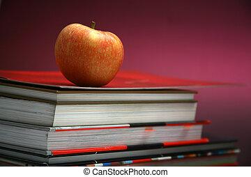 教育, 背景