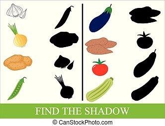 教育, vegetables., ファインド, shadow., ゲーム, ベクトル, 正しい, kids., illustration.