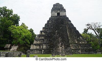 文化, mayan, 台なし, guatemala., tikal