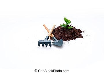新しい生命, 耕作, 考え, ∥あるいは∥