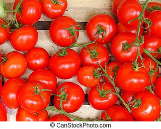 新しい トマト