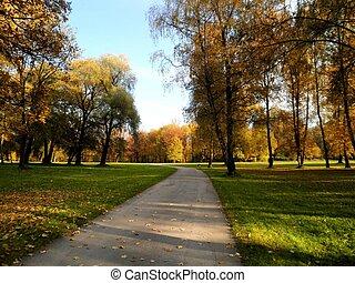 新しい, 公園, ヨーク, 都市
