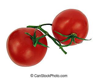 新たに, トマト, 隔離された