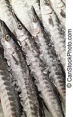 新たに, 市場, 魚
