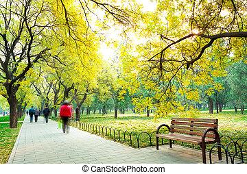 新たに, 椅子, 大通り, 公園, 空気