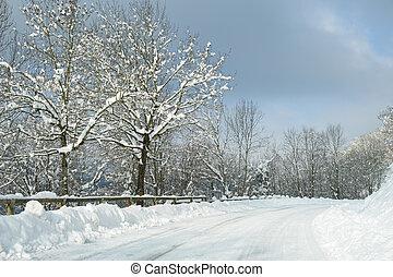 新たに, 落ちている, 雪