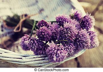 新たに, chives, 花