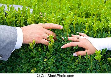 新婚者, 手を持つ