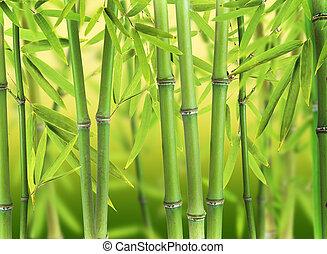 新芽, 竹森林