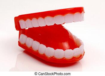 新颖, 牙齿