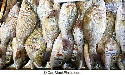 新鮮な魚, 市場