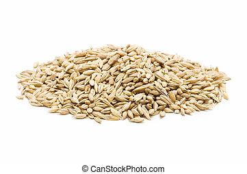 新鮮地, 收穫, 大麥