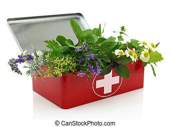 新鮮的藥草, 在, 急救工具