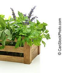 新鮮的藥草, 在, 木盒