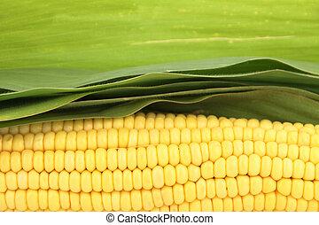 新鮮, 玉米, 綠葉