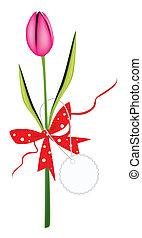 新鮮, 粉紅色, 郁金香, 由于, 紅的緞帶